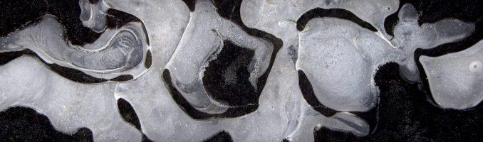 ijsdansers